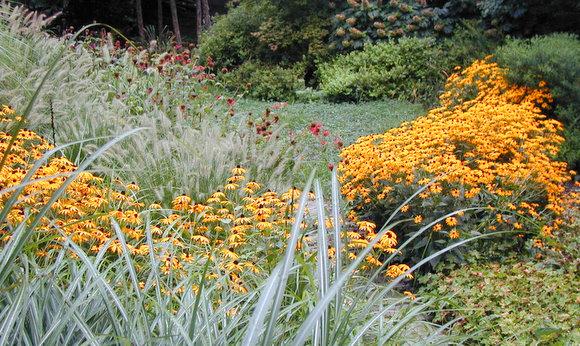 The Basics of Sustainable Gardening - Homestead Gardens, Inc ...