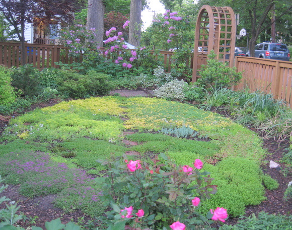 Come See Inspiring Visions of No-Mow Yards - Homestead Gardens, Inc ...