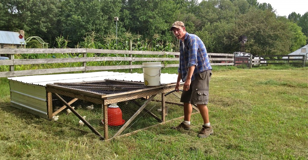 The Sustainable Cabin Creek Heritage Farm in our Backyard