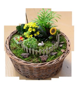 Basket Fairy Garden (2)
