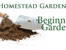beginning-gardeners-banner