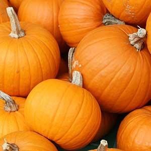 carving-pumpkins2