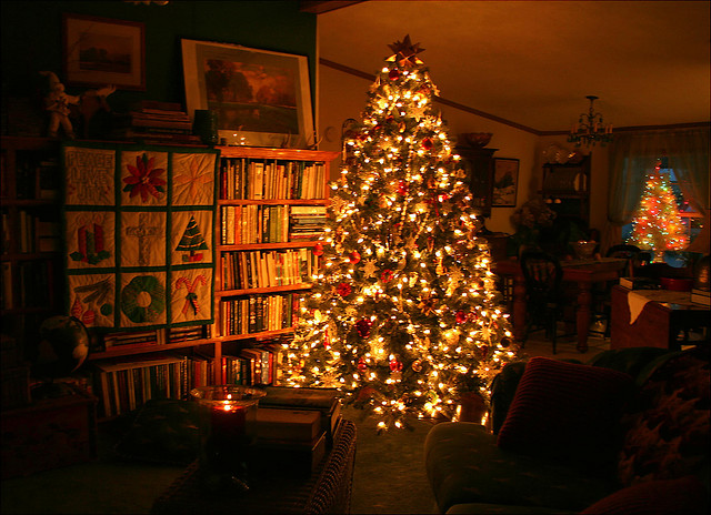 these photos of trees - How To Keep Christmas Tree From Drying Out