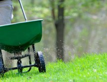 fall-lawn-fertilization (1)