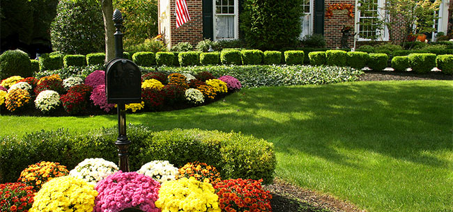fall-lawn-landscaping