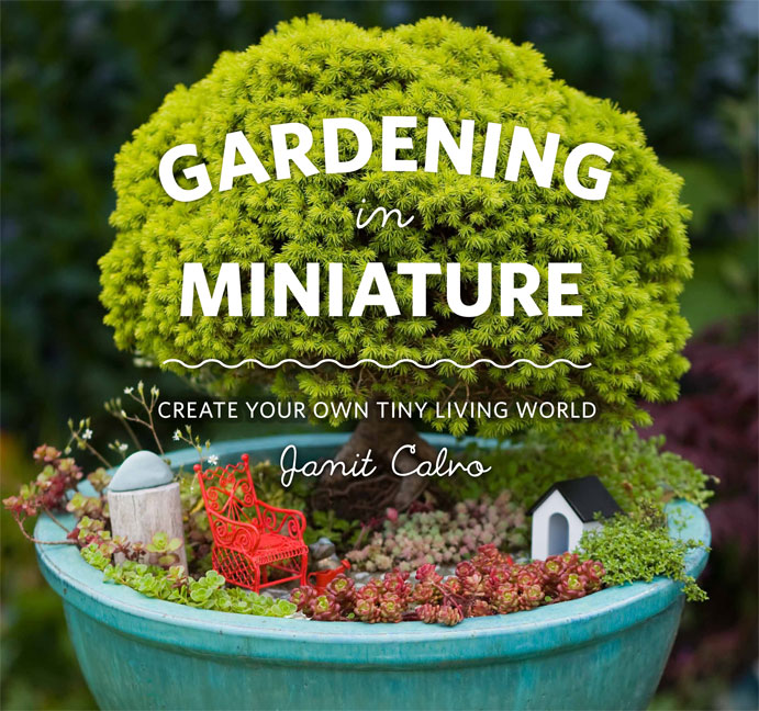 Call Them Fairy Gardens Or More Broadly, Miniature Gardens, But Everyone  Agrees Itu0027s A Trend On The Rise. It Combines The Joy Of Gardening With The  Magic Of ...