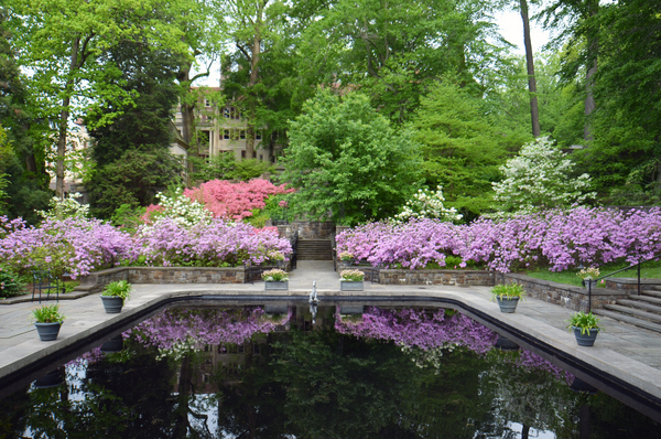 Seeing Winterthur in Summer - Homestead Gardens, Inc ...